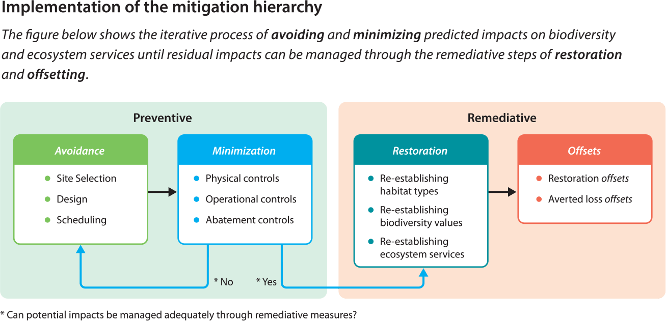 Implementation of the mitigation hierarchy